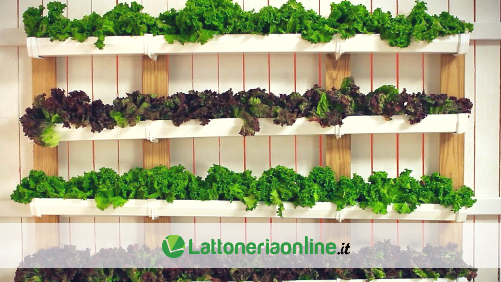 Orto domestico in lamiera: realizza il tuo giardino in casa con le grondaie